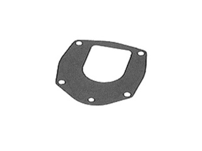 GASKET W/P LOWER