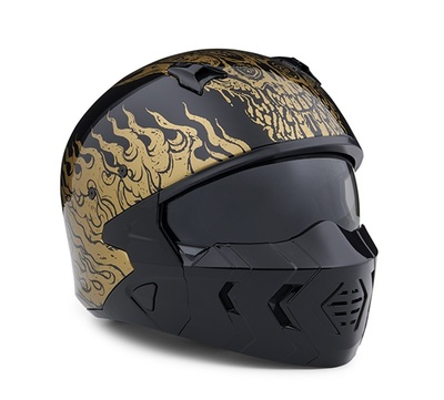 HELMET-GOLDUSA,2IN1,