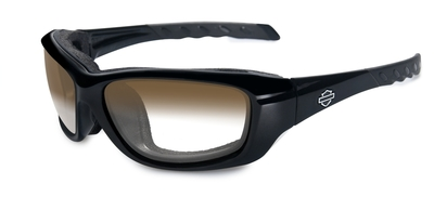 HD GRAVITY LA Brown Gloss Black Frame